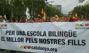 Comunicado De Impulso Ciudadano, AEB Y S'ha Acabat Sobre La Enmienda Lingüística A La Ley Celaá